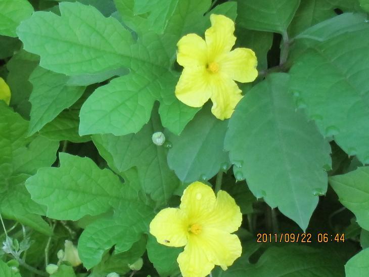http://www.law-pro.jp/weblog/20110922.JPG