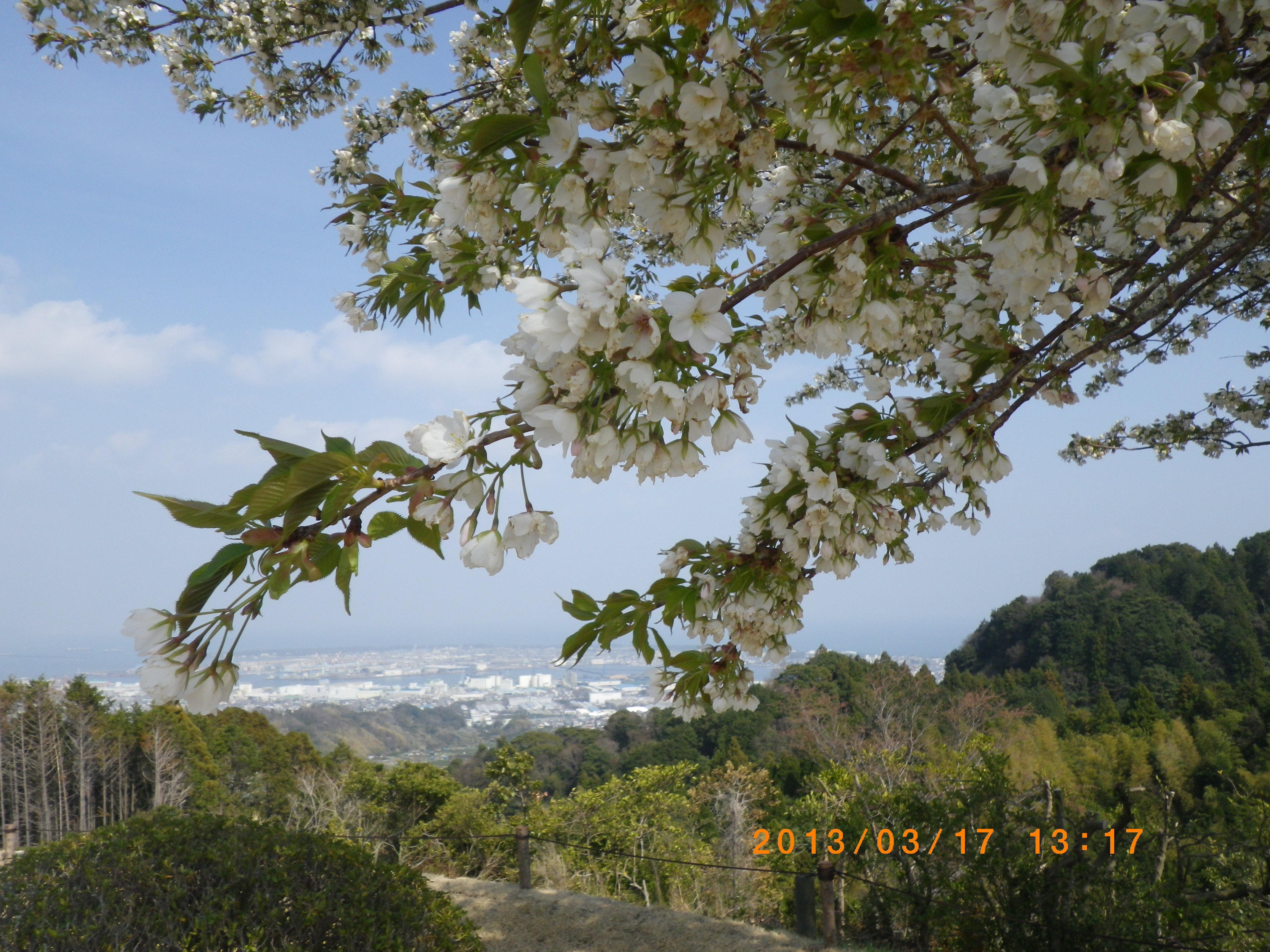 http://www.law-pro.jp/weblog/20130322/IMGP3512.JPG