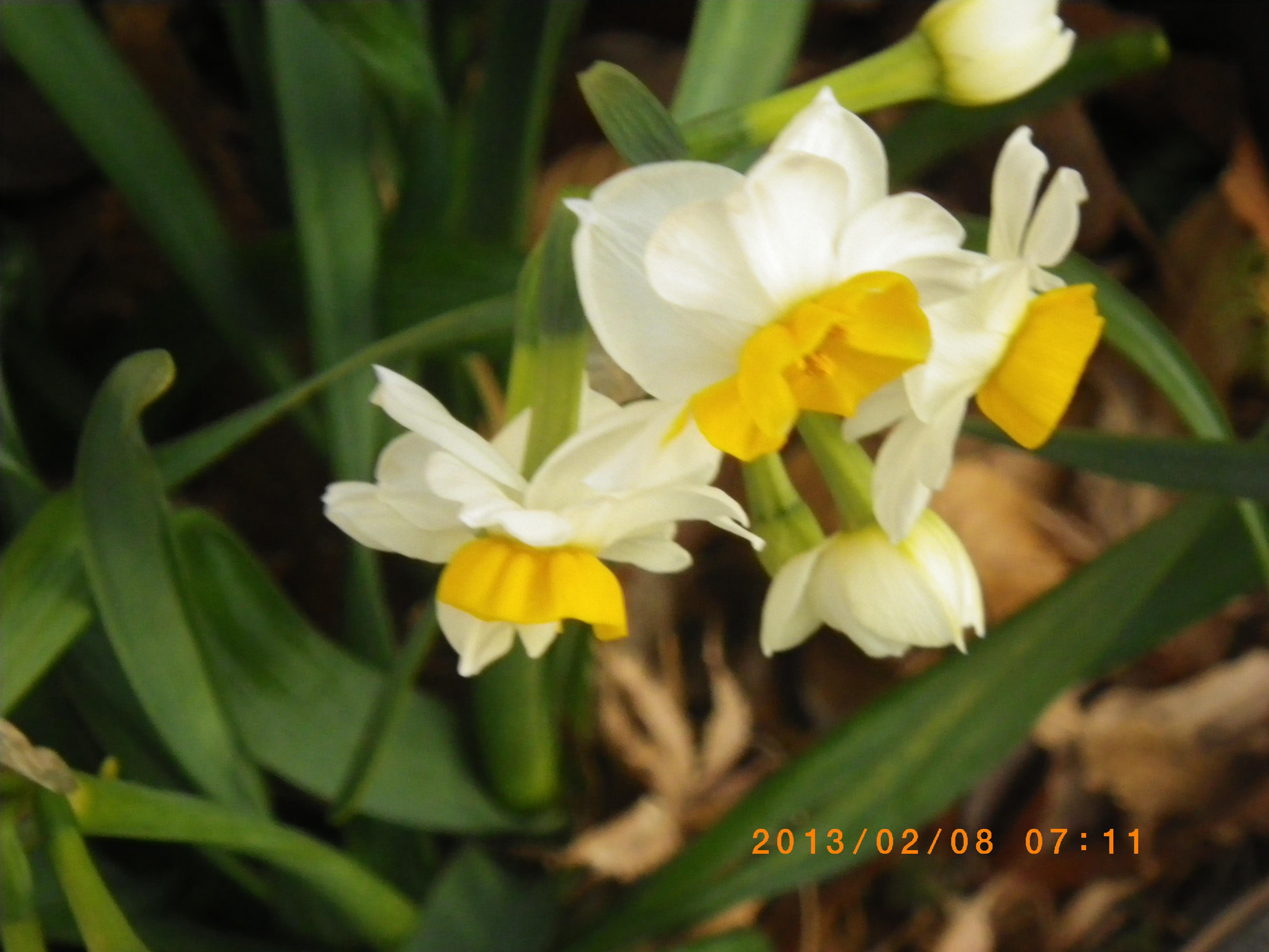 http://www.law-pro.jp/weblog/IMGP3263.JPG