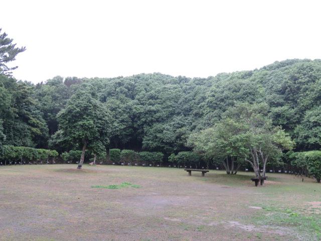 http://www.law-pro.jp/weblog/IMG_3703.JPG
