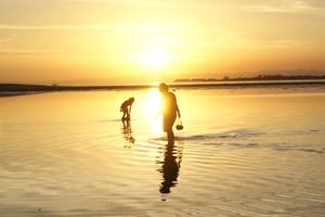 カオハガン島の海辺